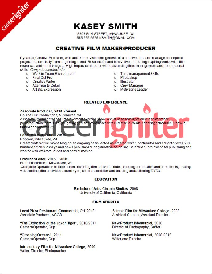 Film Producer Resume Sample PRODUCER Resume Pinterest Sample - Skills For Resume Example
