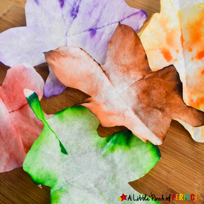 Autumn Leaves STEAM Absorption Art and Free Template –