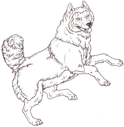 Mural Three Snow Bears Sled Dog Jumping Dog Coloring Page Dog