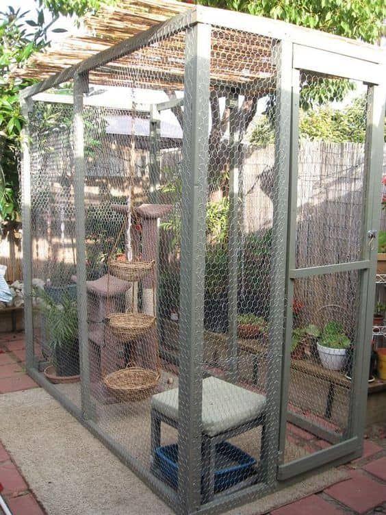 Fancy Cat Enclosure Ideen Die Sie M 246 Gen Katzenk 228 Fig