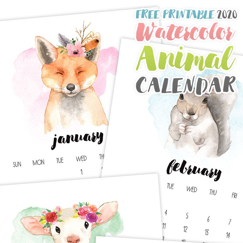 Free Printable 2020 Watercolor Animal Calendar Watercolor