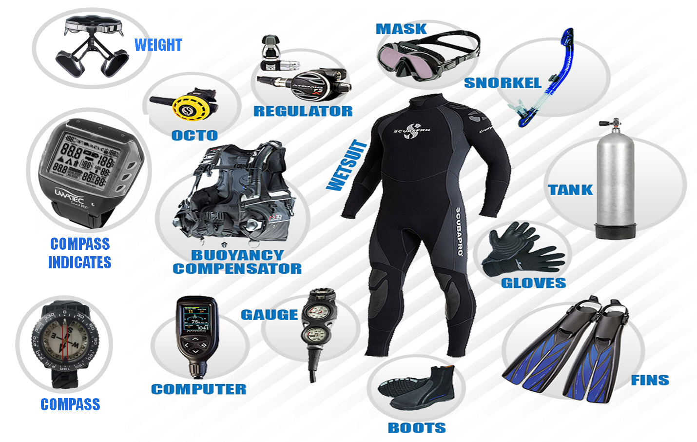 scuba diving equipment and names - Google Search | Scuba ...
