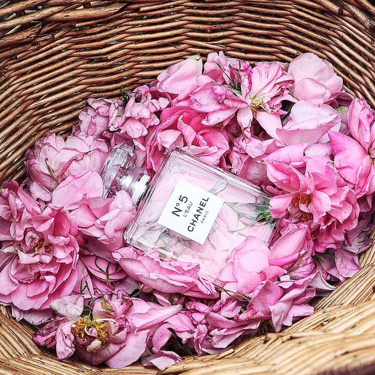 Chanel N5 Grasse Chanel Grasse Feliz