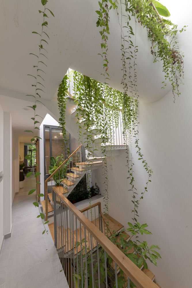 Gallery of VY ANH House / Khuon Studio - 2