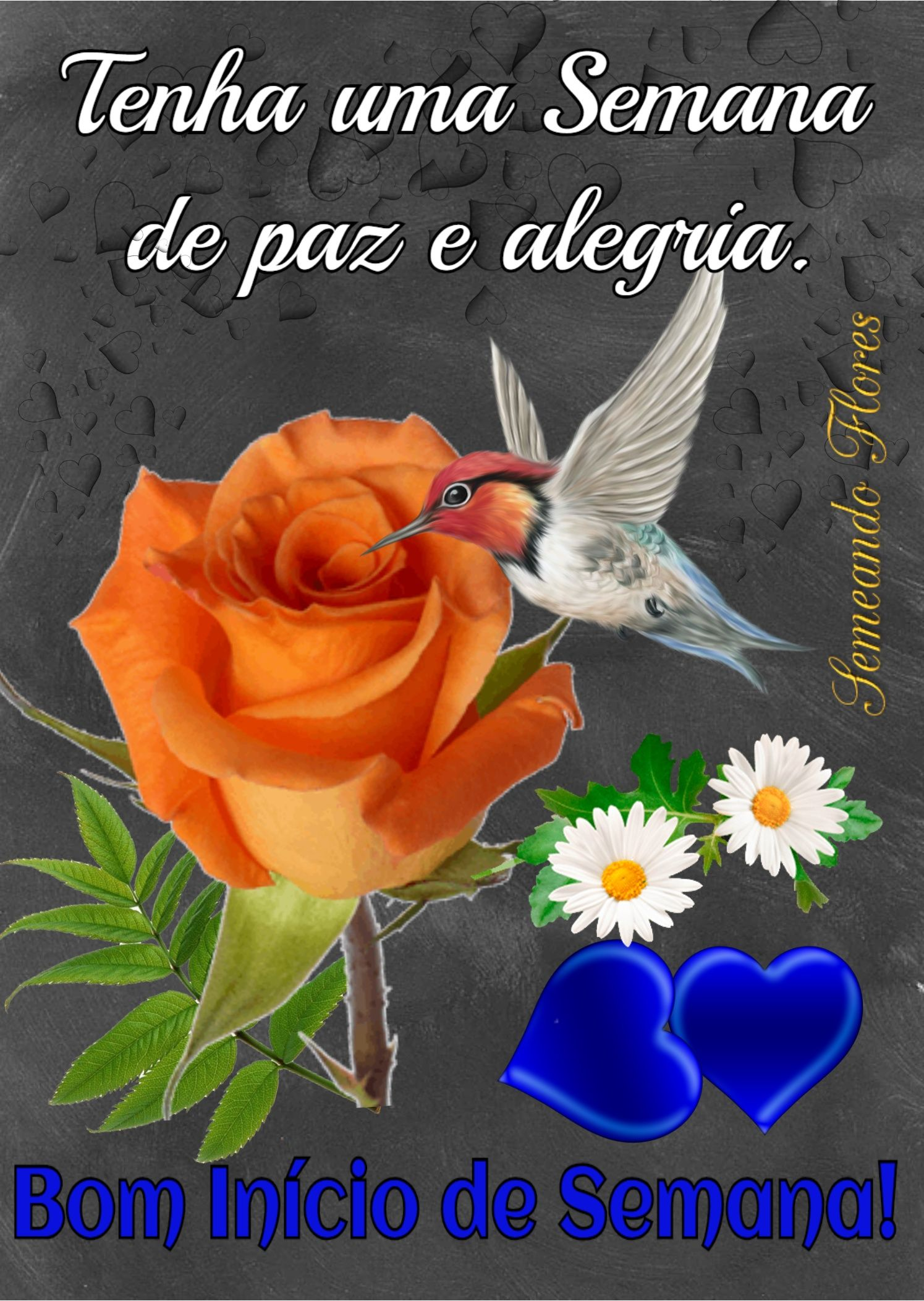 Pin De Antonia Moreira Santos Em Semana Com Imagens Mensagem