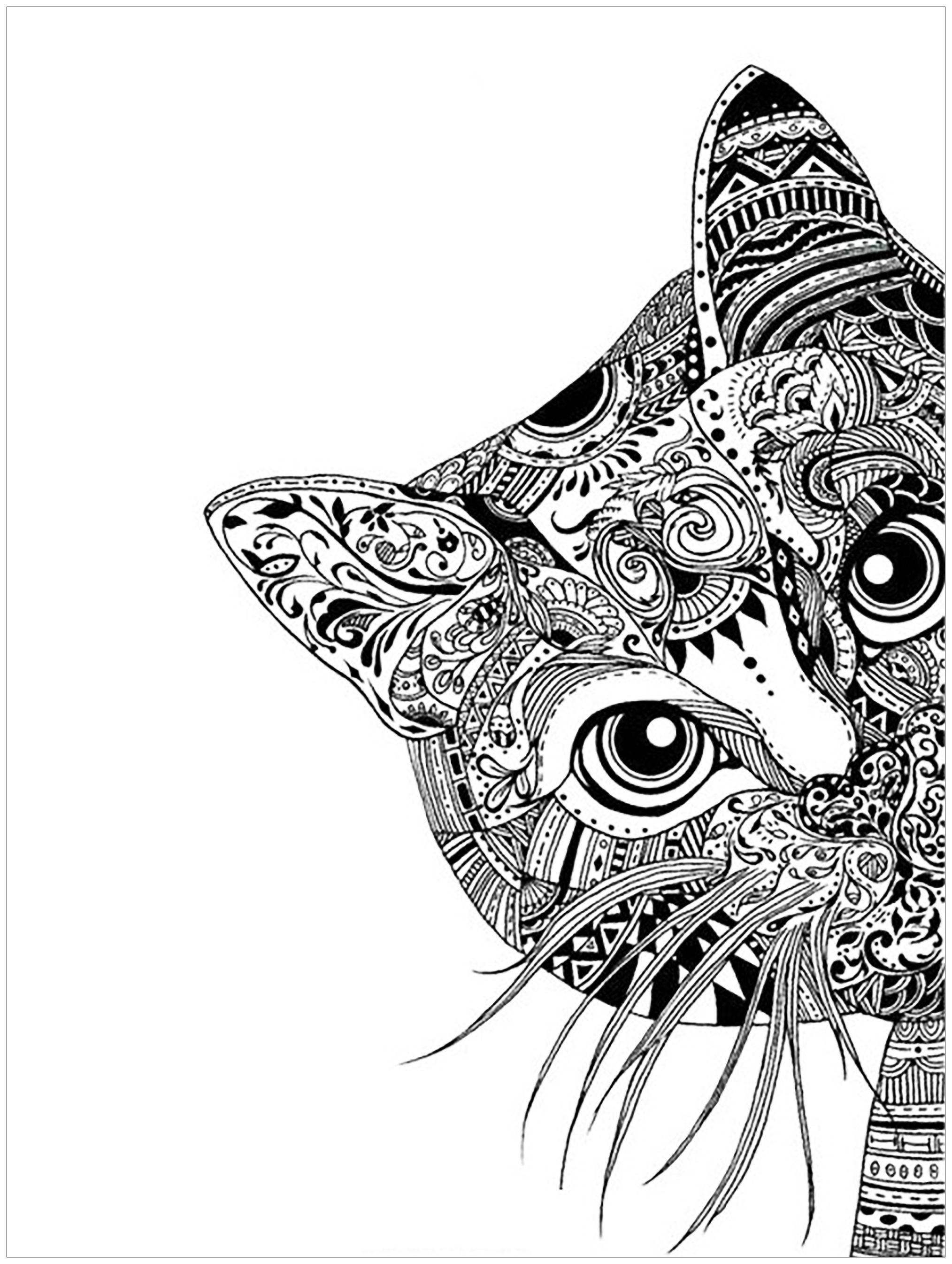 Pin Op Coloring Page