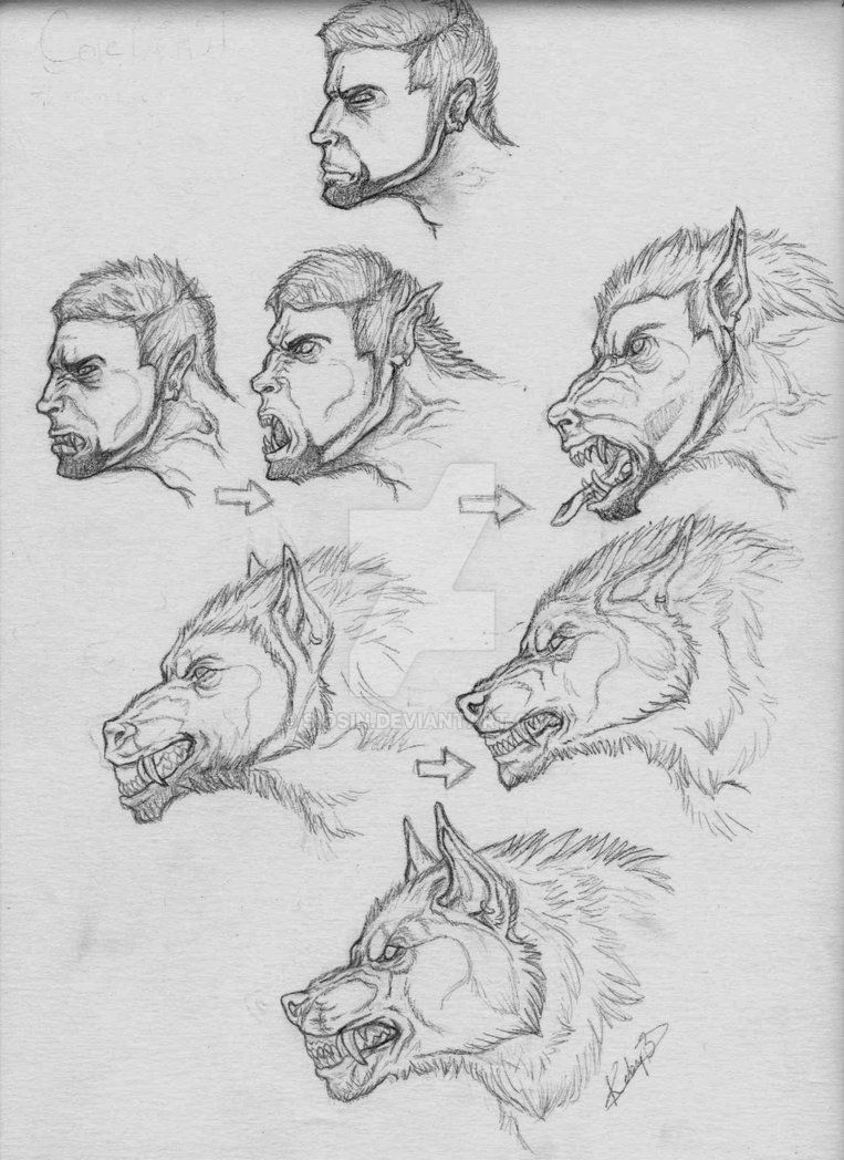 Cole transformation by siosin on deviantart wolves at our door