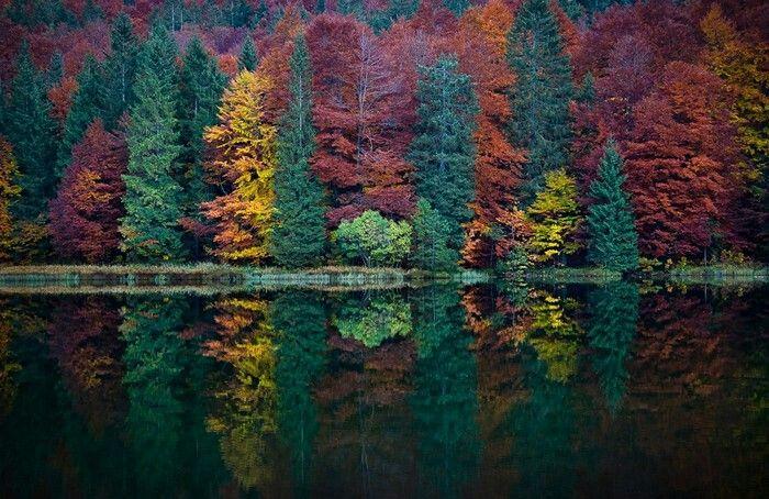 Autumn reflection.