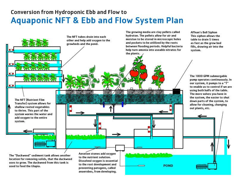 Aquaponic Equipment Plans Diy Aquaponics Systems Can Help You Eat