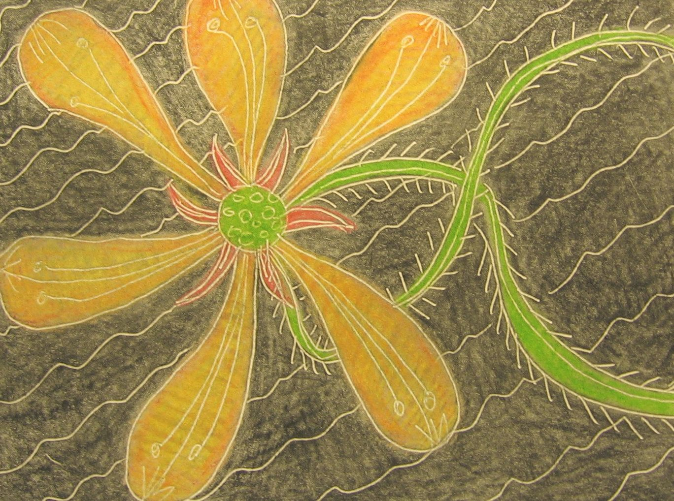 Etched yellow flower greeting card yellow flowers art
