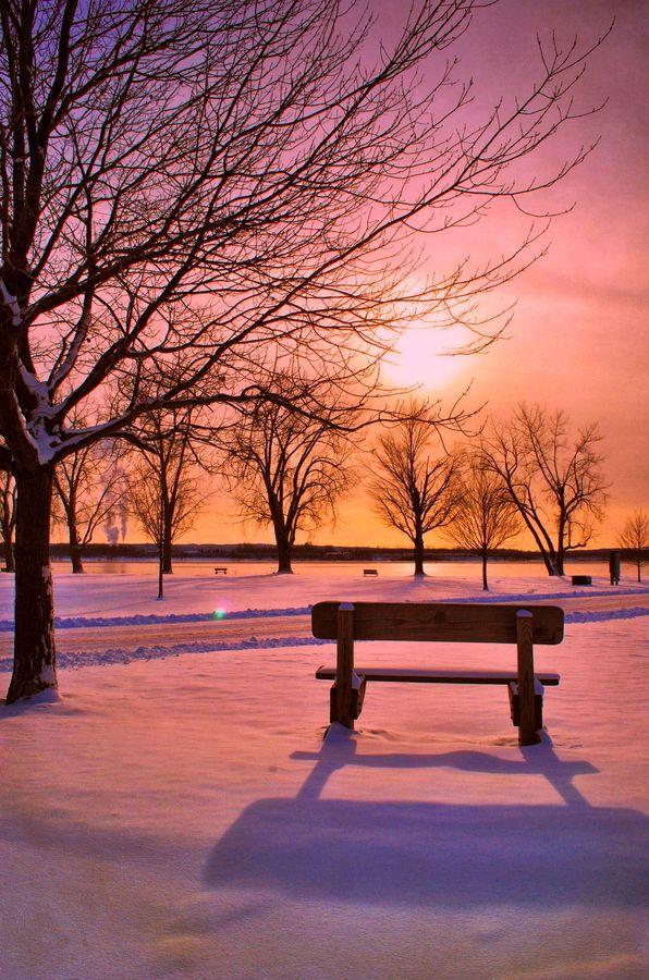 Sunset Bench Winter