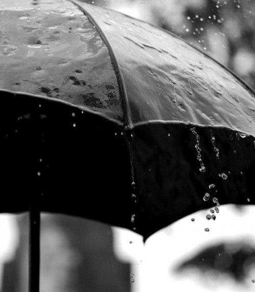 rainy black umbrella