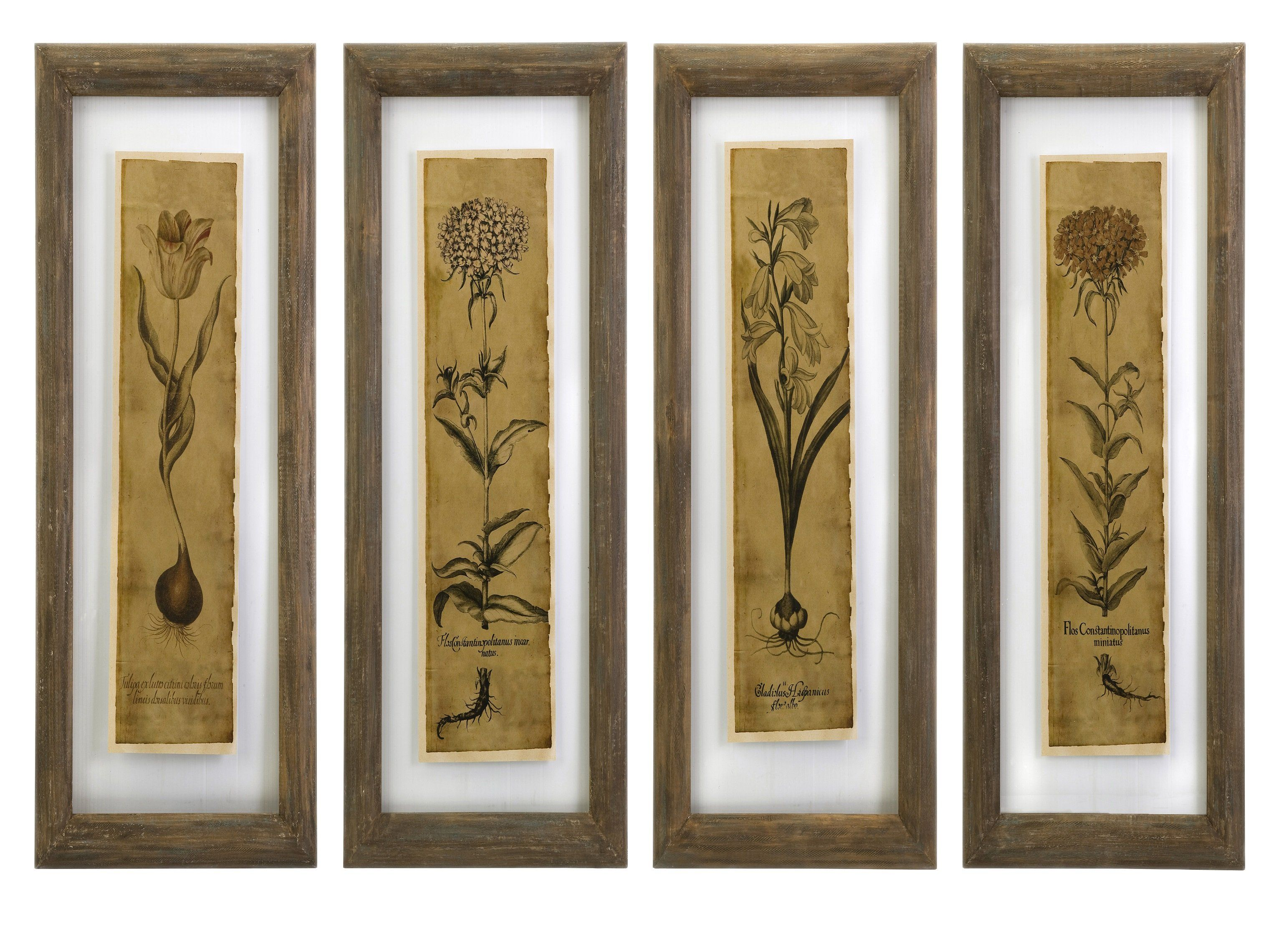 Cassander double glass print wall art set of lovely botanical