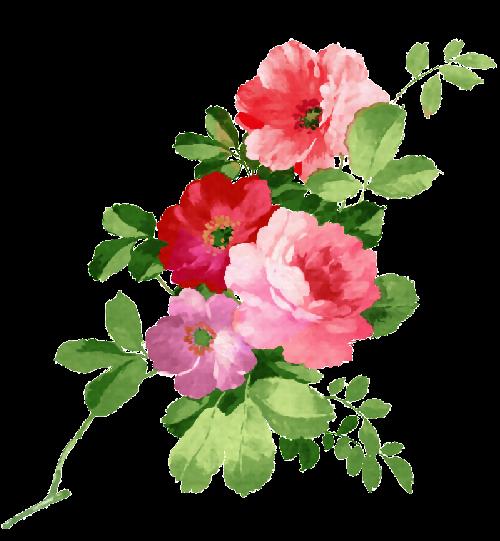 Rosas Vintage Caixa De Madeira Decoupagem Etc E Tal