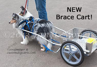 Custom Dog Carts Manufacturing And Selling The Finest Dog Carts