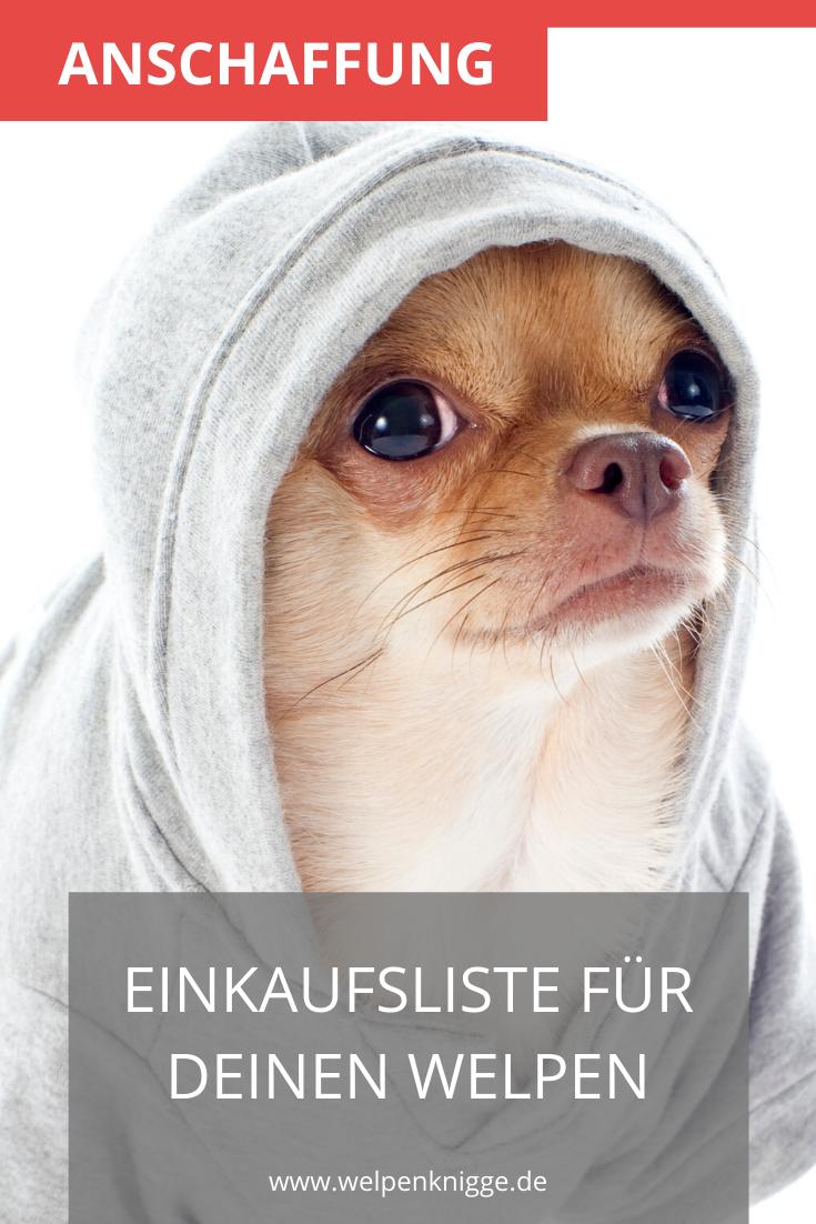 Welpen Erstausstattung In 2020 Welpen Hunde Futter Hunde
