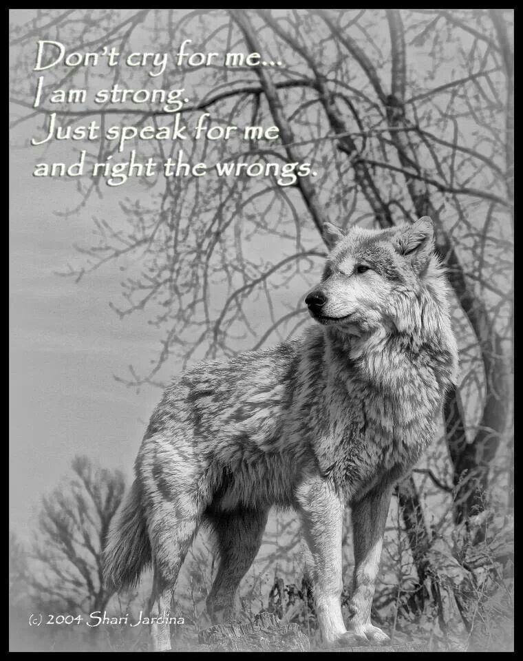 Wolf sprüche Zitate und