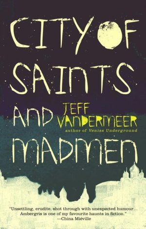 city of saints and madmen ~ jeff vandermeer (this book is stunning)