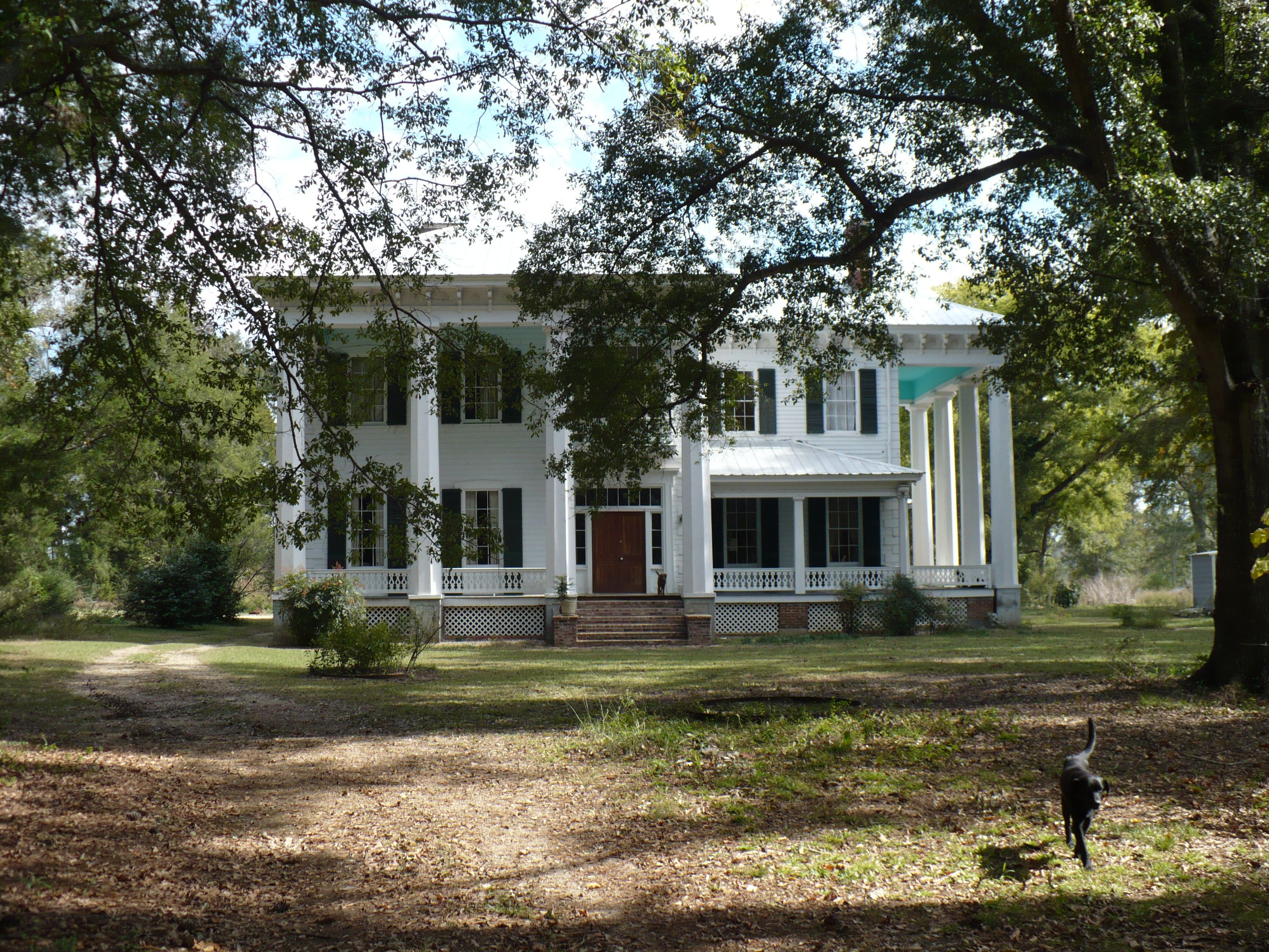 White columns plantation tait starr house near camden for Plantation columns