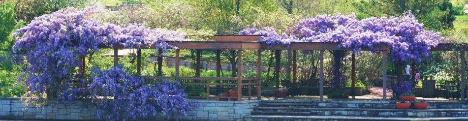 Kansas City Botanical Gardens >> Powell Gardens Kansas City S Botanical Garden Powell