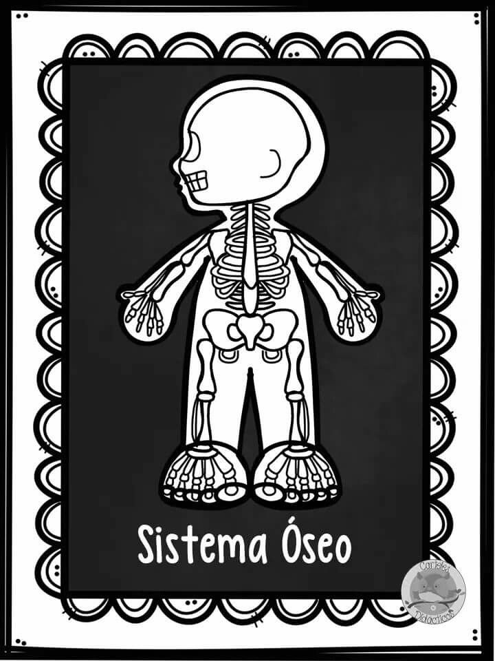 Pin de Mirta Esther en Education | Pinterest | Formato y Ciencia