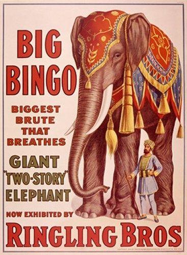 circus elephant vintage - Google Search
