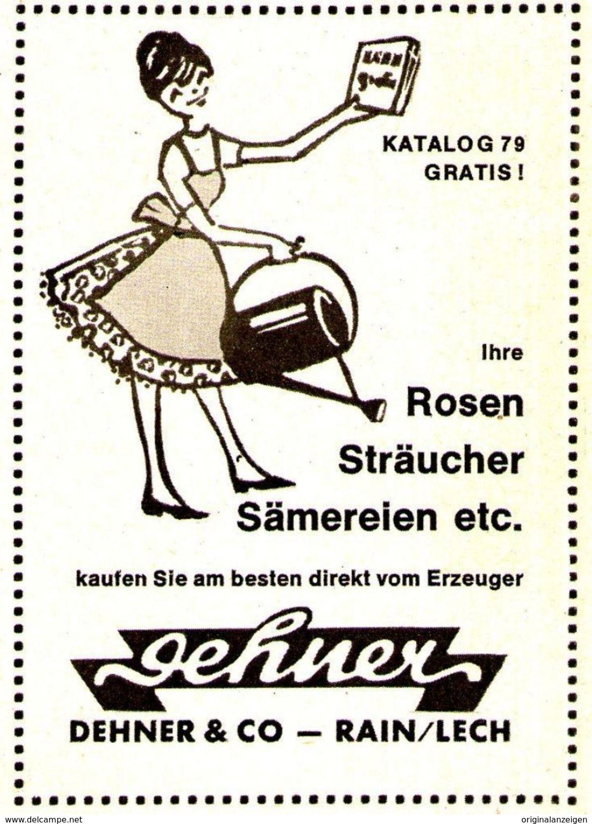 Original Werbung/ Anzeige 1961   DEHNER KATALOG / SAMEN / ROSEN   Ca.