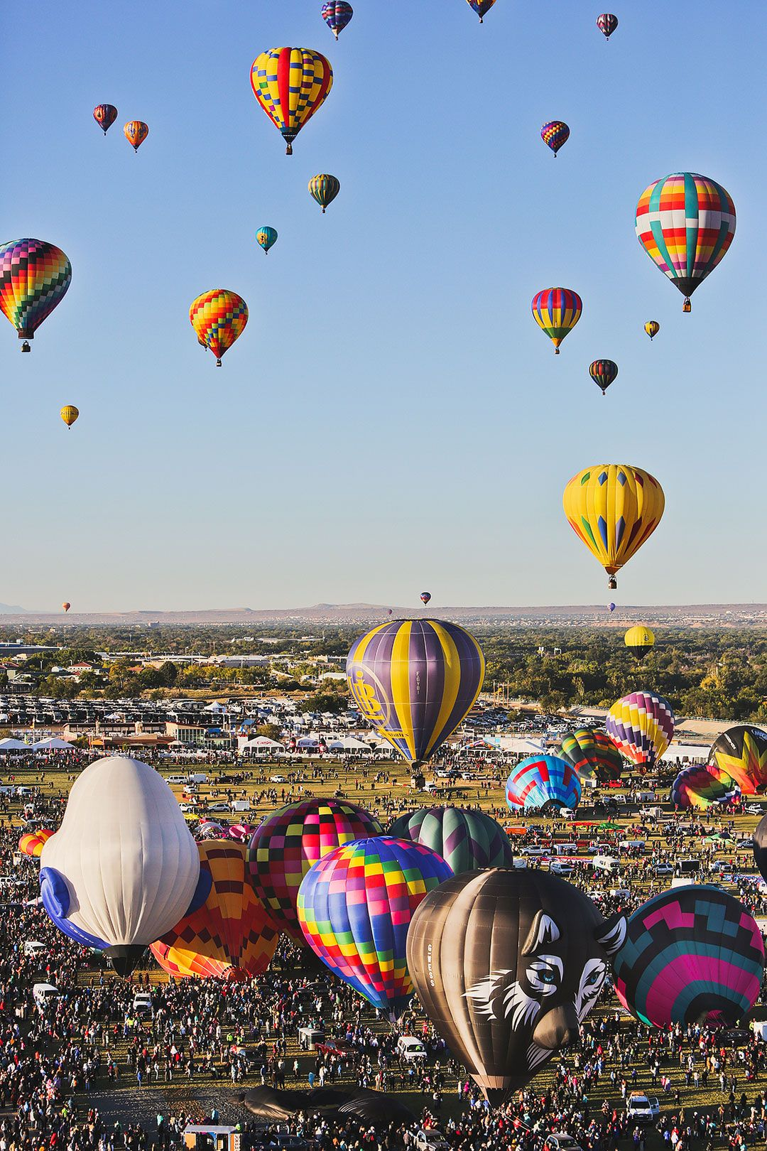 Albuquerque Balloon Festival 2020 What You Need to Know