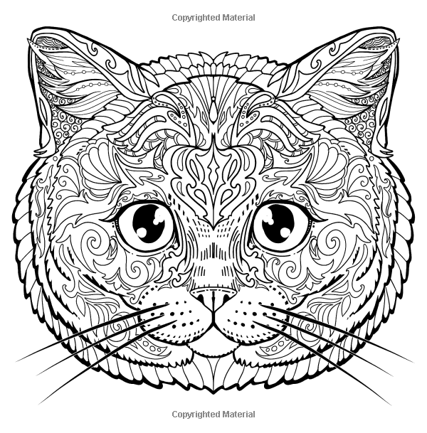 Amazon Com Stay Pawsitive Cat Coloring Book For Adults Relaxing And Stress Relieving Cat Coloring Pages Cat Coloring Page Cat Coloring Book Coloring Books