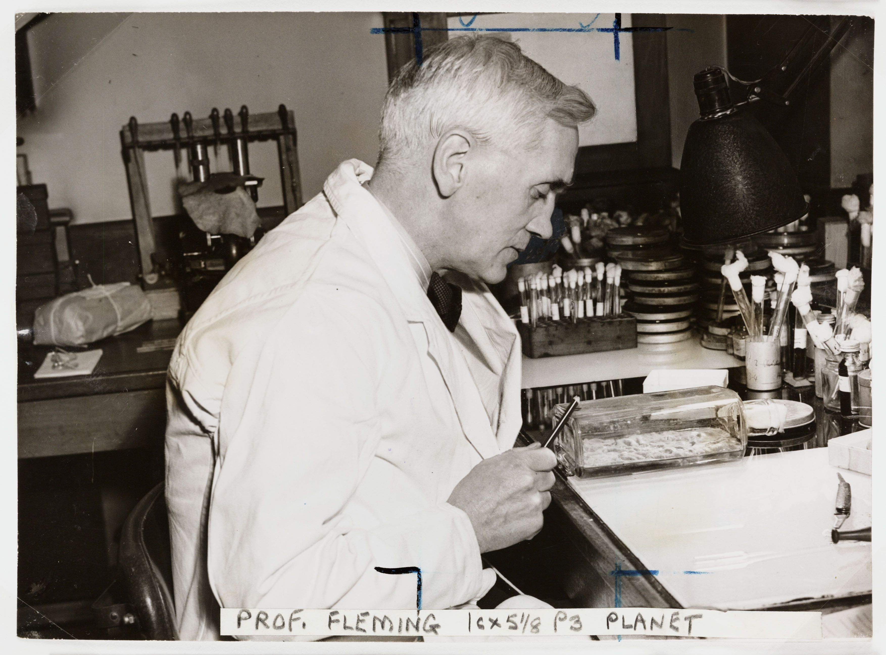 Invention Of The Antibiotics Alexander Fleming Discovered The