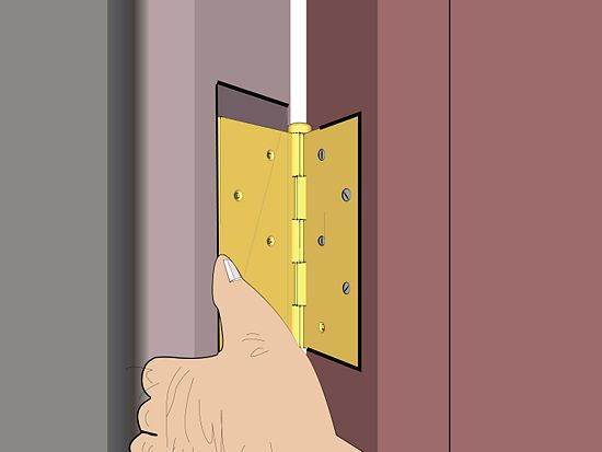 How To Repair A Loose Wood Screw Hole For A Hinge Wood Screws Diy House Projects Home Repair