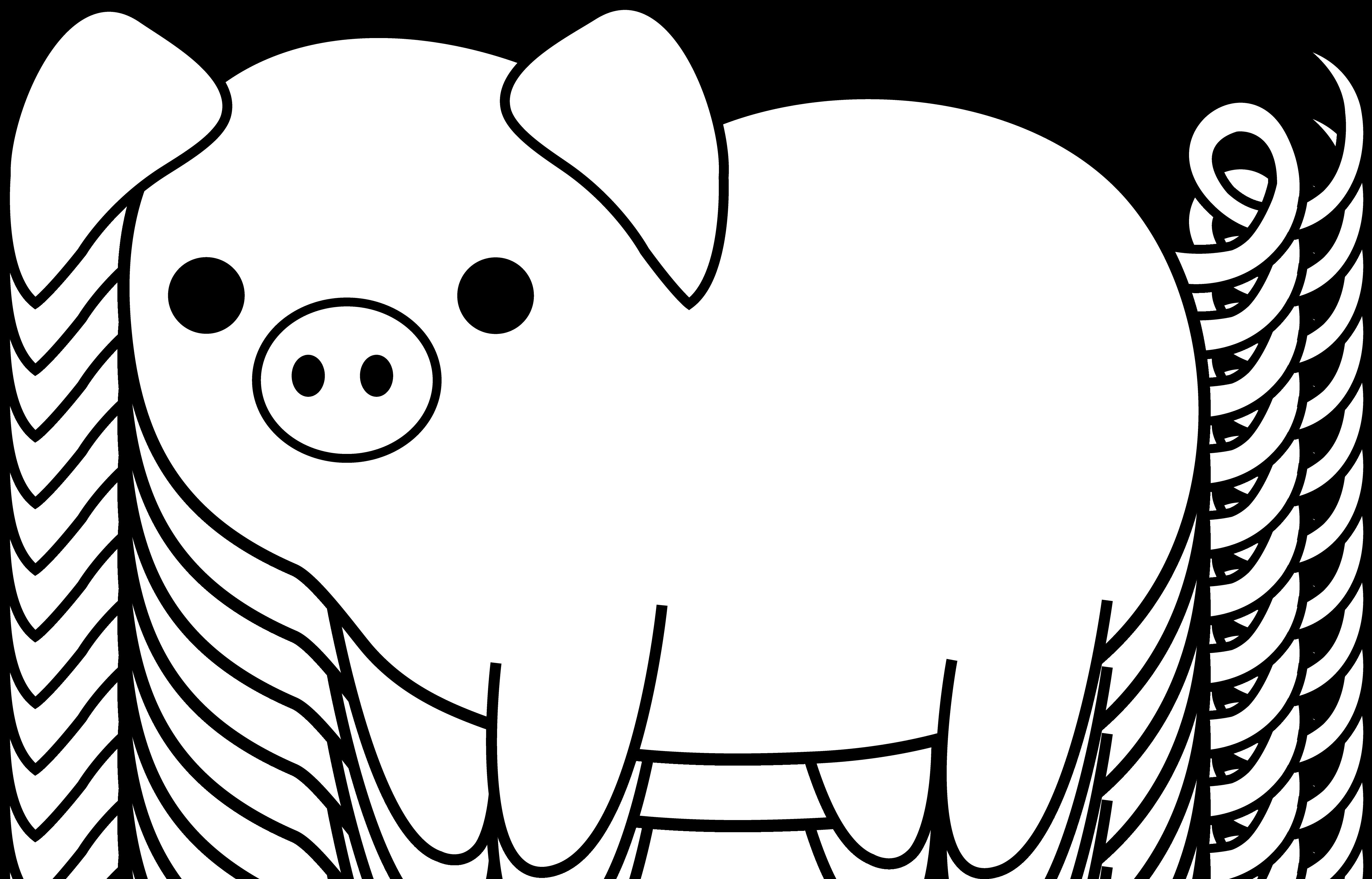 medium resolution of cute black and white pig