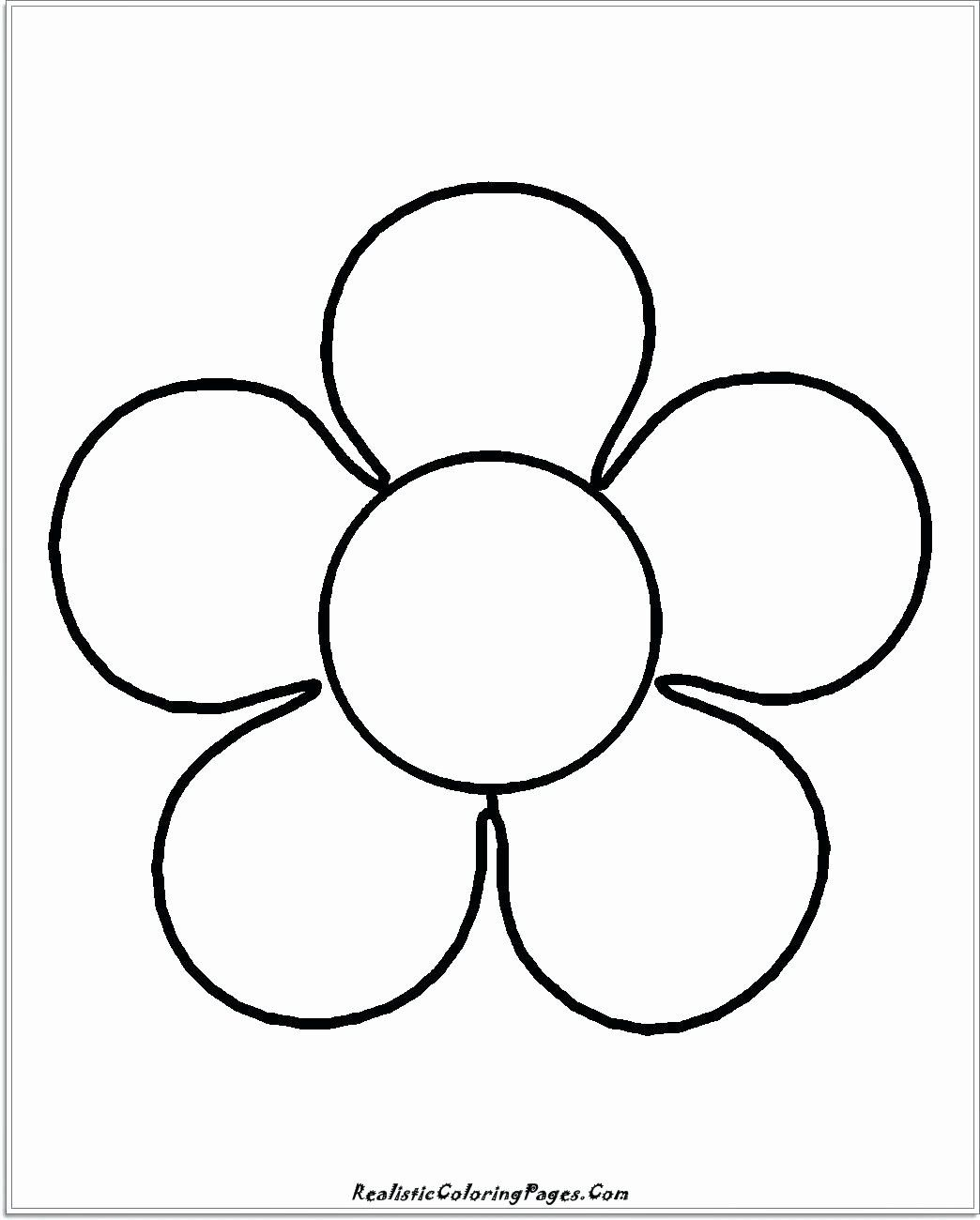 Star Shape Coloring Pages Beautiful Free Preschool Coloring Pages Shapes Redbirdcolor Shape Coloring Pages Flower Coloring Pages Easy Coloring Pages