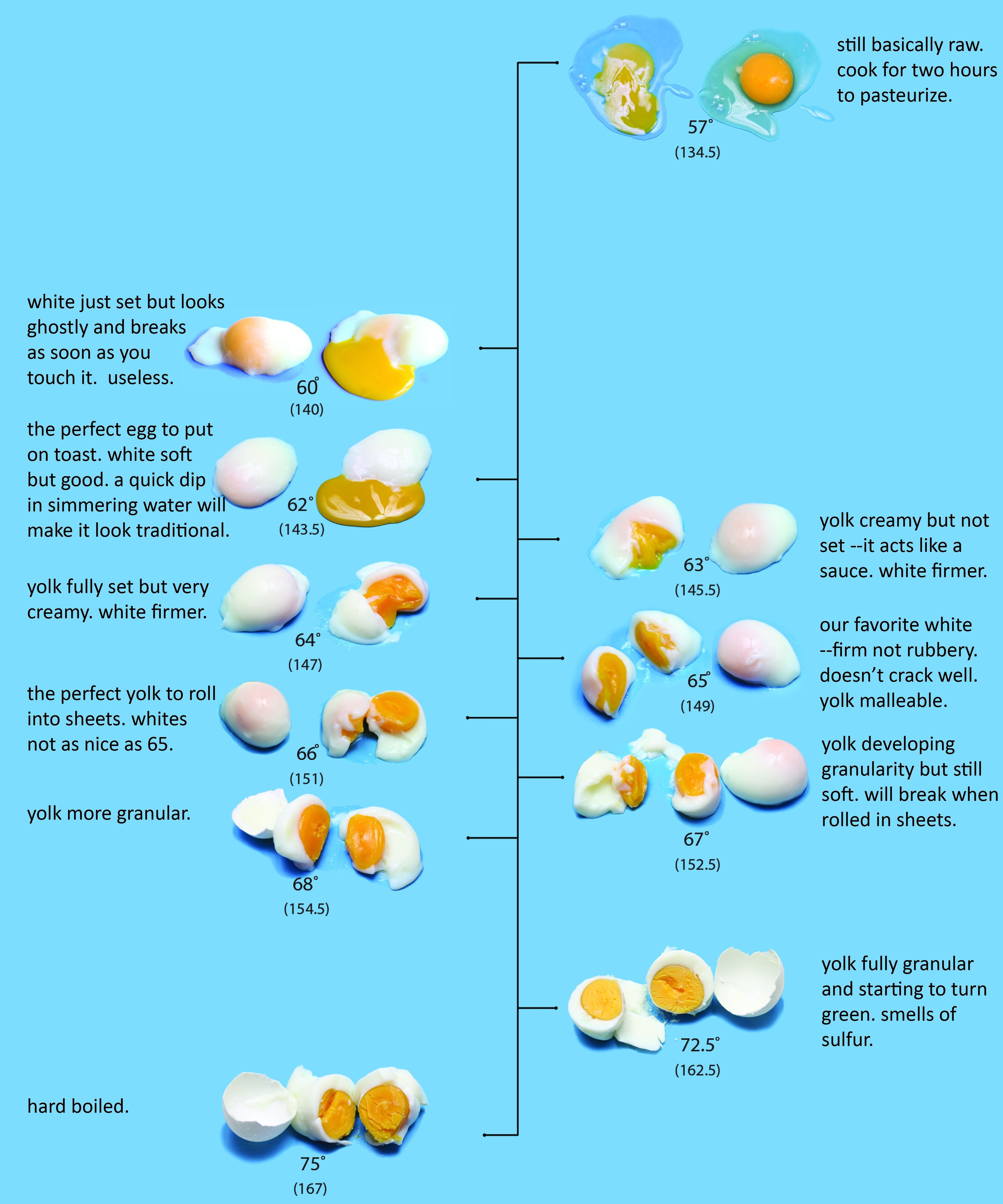 Dave Arnold\'s egg chart, which appeared in Lucky Peach | Food know ...