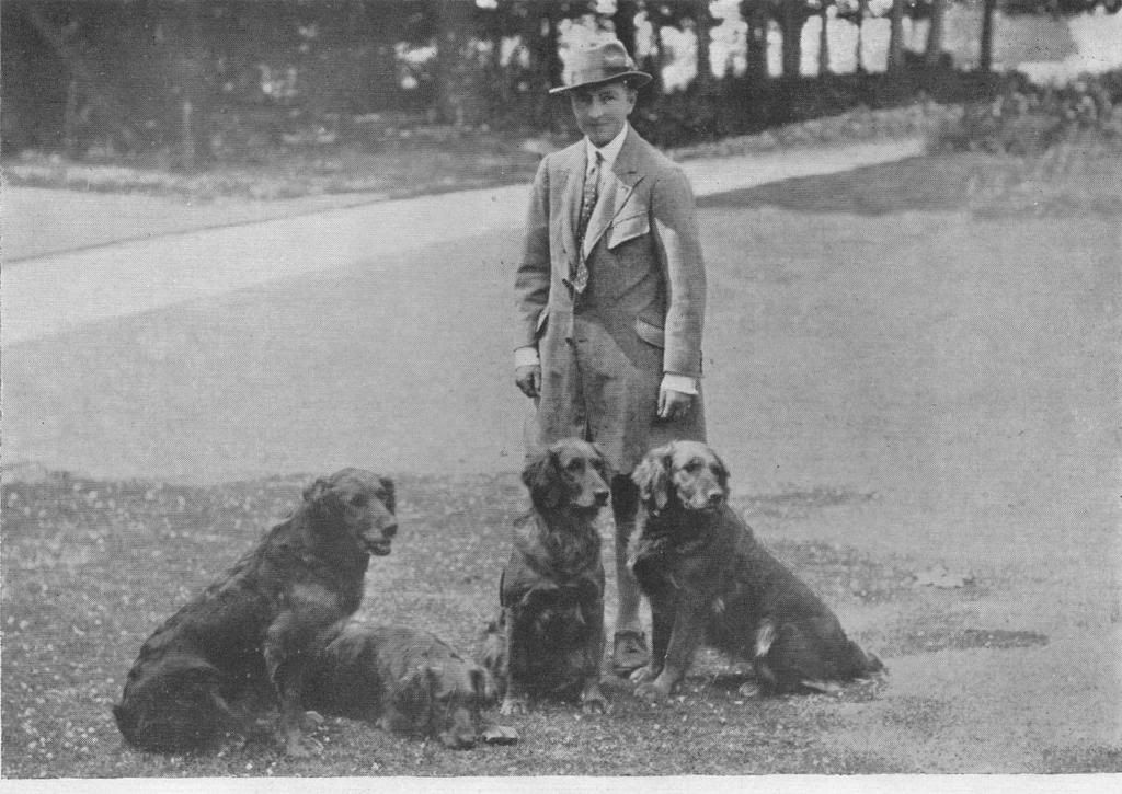 Mrs Winifred Charlesworth And Her Noranby Golden Retrievers Dogs