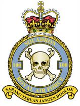 100 Squadron Raf Motto Malay Sarang Tebuan Jangan Dijolok Never Stir Up A Hornet S Nest The Phantom F Air Force Badge Raf Raf 100