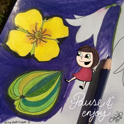 Palasia sateenkaaresta: Pause and Enjoy