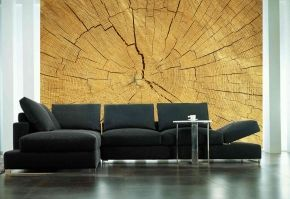 """Textures for your Walls: Wallpaper murals of textures like wood, stone, concrete, leather, velvet or marble finishes are very trendy.... Mural """"Circles of Time"""". A wallpaper mural by Muralunique.com."""