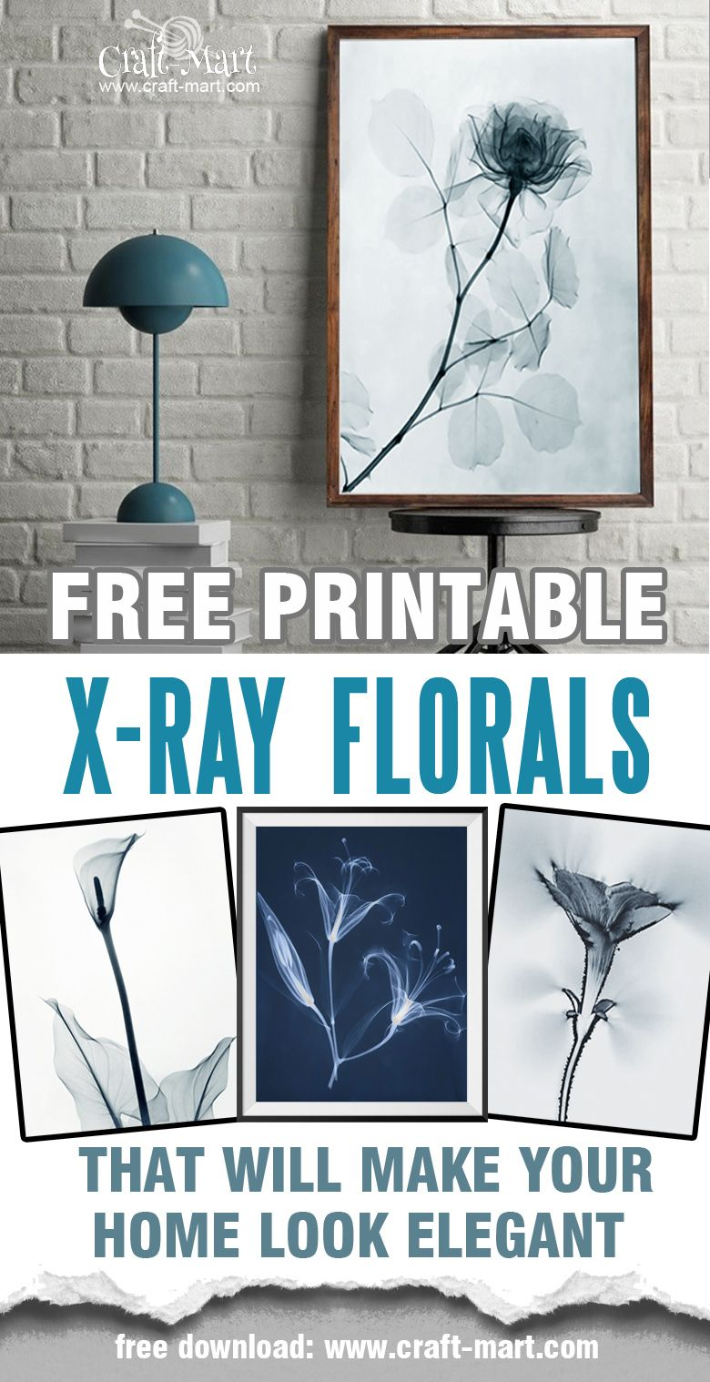 Free printable floral wall art to beautify your space | Free