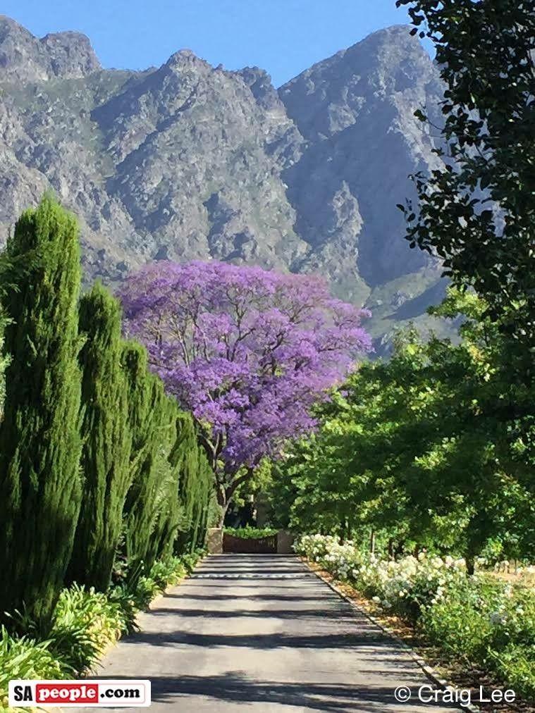Franschhoek PAISAJES DEL MUNDO Pinterest Paisajes, Jardines y - paisajes jardines