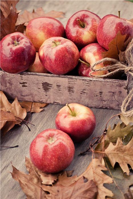 autumn apple harvest red brown mood pinterest obst. Black Bedroom Furniture Sets. Home Design Ideas
