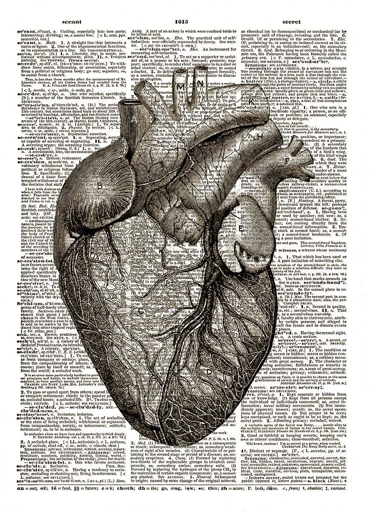 grey\'s anatomy heart - Google Search | Body Mods | Pinterest | Anatomy