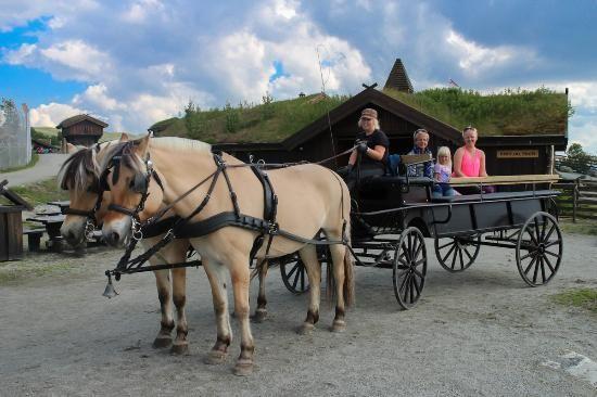 Ut på tur med hest og vogn