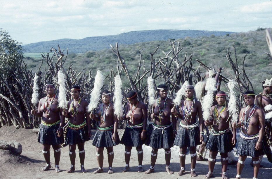 Zulu village 4 - Zulu people - Wikipedia, the free encyclopedia - dr livingstone i presume