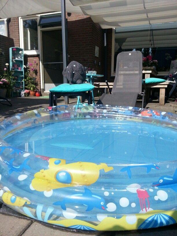 Olli bij zijn zwembad