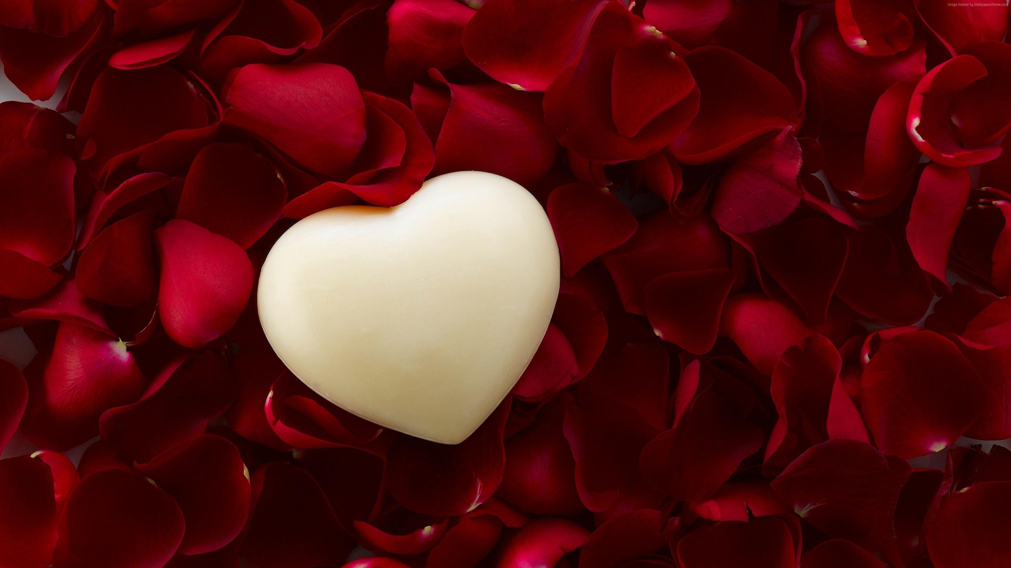 Stock Images Love Image Heart 4k Stock Images