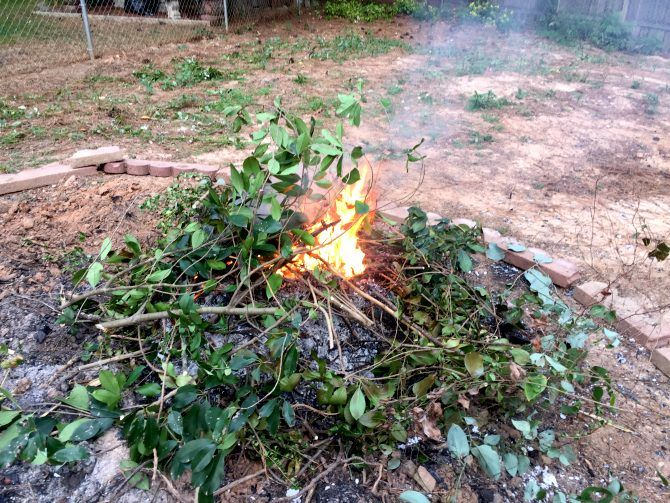 33a13a6c9c793eff983430a8b1808fa3 - How To Get Rid Of Bonfire Smell In House
