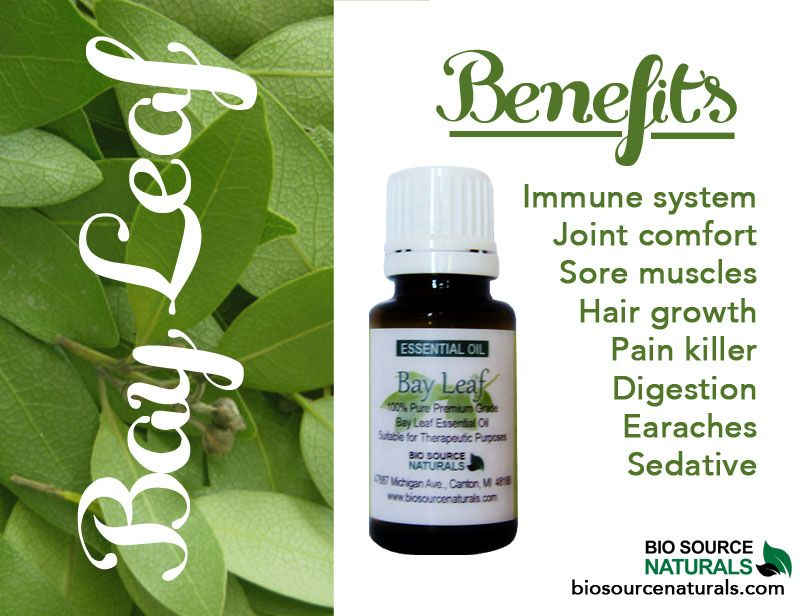 Bay leaf essential oil helps keep your immune system strong and healthy. #aromatherapy