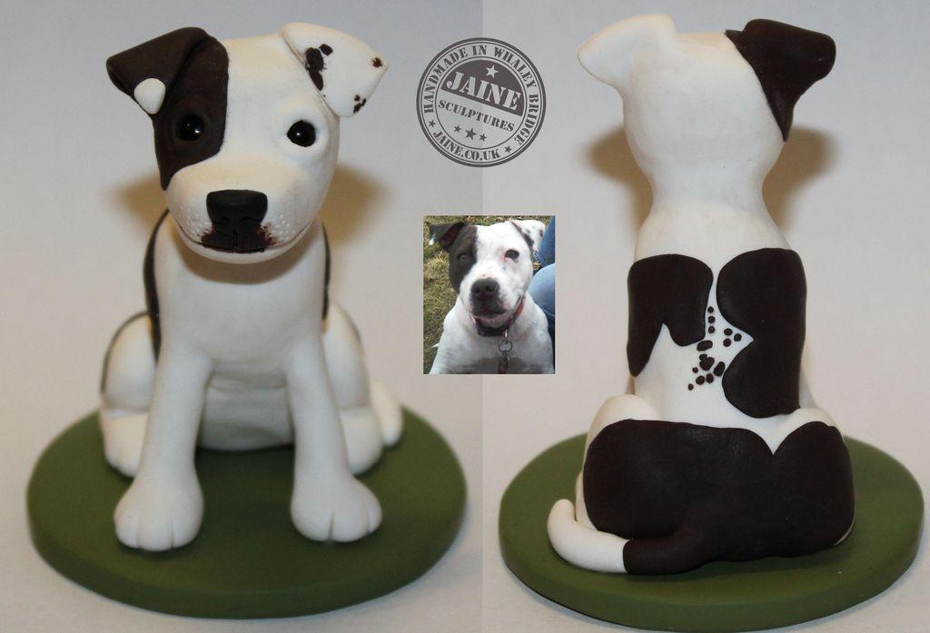 Puppy gift box uk
