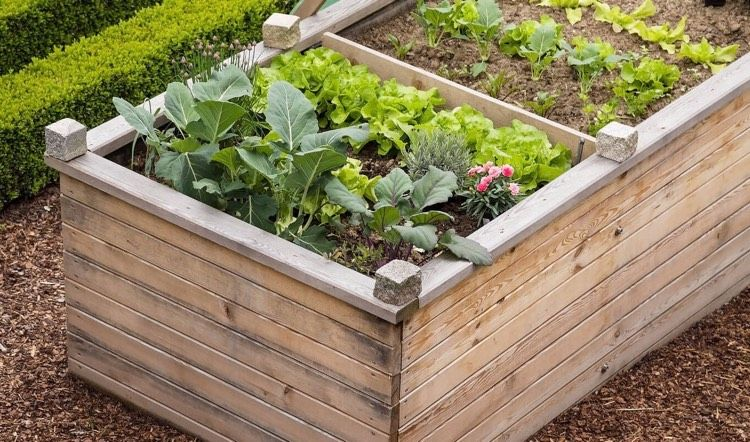 Create A Raised Bed Tips For Correct Filling And Planting Hochbeet Hochbeet Anlegen Garten